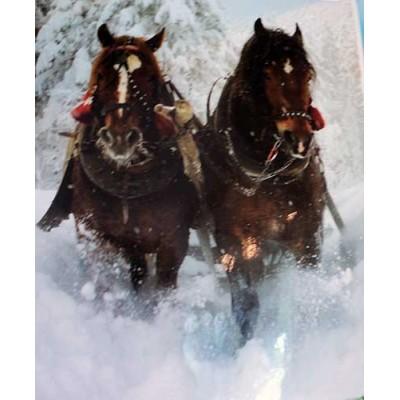 Couverture Doudou chevaux neige