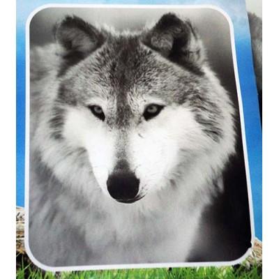 Couverture Doudou loup