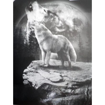 Couverture Doudou loup hurle au clair de lune