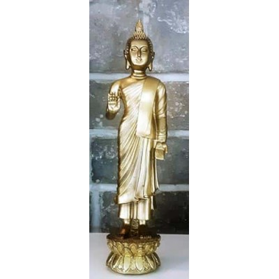 Grand bouddha debout protection or